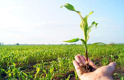 اخذ جواز تاسیس جهاد کشاورزی